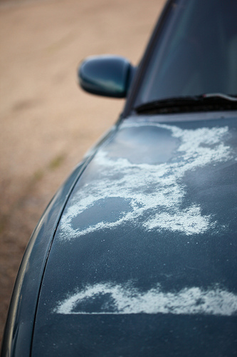 How Long Does It Take For Car Paint To Dry